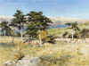 Orlov Alexey. View of the Crimea. Art print on canvas
