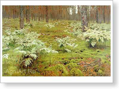 Levitan Isaac. Fern in the Forest. Fine art postcard A6