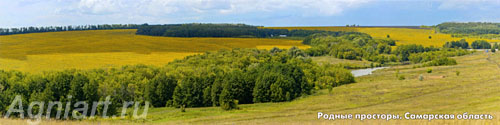 Native expanses. Samara Region. Bookmark 5х20 сm