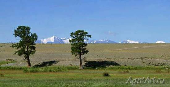 Altai. In the Chuyskaya Steppe. 21328