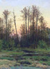 Shishkin Ivan. Forest in Spring. Fine art print A3