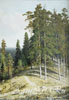 Shishkin Ivan. Forest from the mountain. Fine art print A3