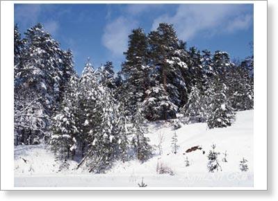 Пейзажи самарская лука зима в