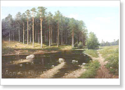 Polenov Vasily. Pine Forest on the River Bank. Art print on canvas