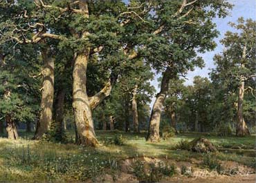 Shishkin Ivan. Oak Wood. Art prints on a stretcher