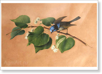 Tolstoy Fyodor. Bird on the Branch. Art print on canvas