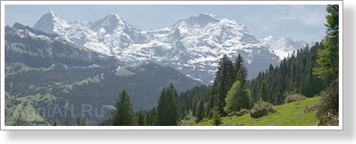 Mountains. Swizerland. The Bernese Alps. View of the Jungfrau. Poster A3+ (25x70 cm)