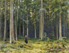 Shishkin Ivan. Countess Mordvinova's Wood. Peterhof. Art print on canvas