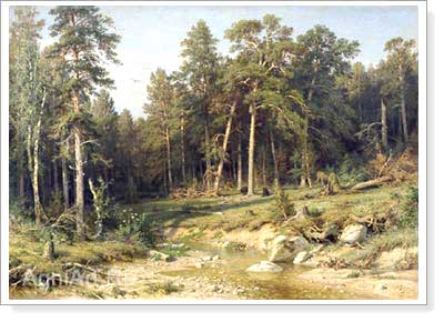 Shishkin Ivan. Pine Wood. Ship's Timber in Vyatka Province. Art print on canvas