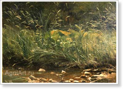Shishkin Ivan. Bank of the pond. Art print on canvas