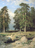 Shishkin Ivan. Holy Well near Yelabuga. Fine art print B2