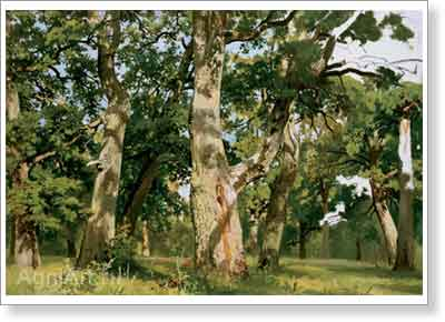 Shishkin Ivan. Oaks -- Evening. Art print on canvas