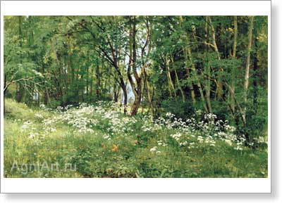 Shishkin Ivan. Flowers at the Edge of the Wood. Art print on canvas