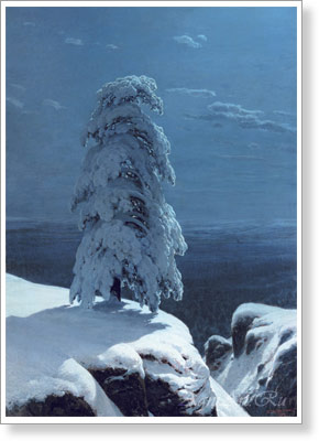 Shishkin Ivan. In the Wild North... Fine art print B2
