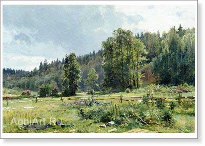 Shishkin Ivan. Meadow at the Edge of the Wood: Siverskaya. Fine art postcard A6
