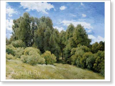 Shishkin Ivan. Glade in the Forest (Glade). Art print on canvas - paintings, sale