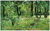 Shishkin Ivan. Glade in the Forest. Art print on canvas - paintings, sale