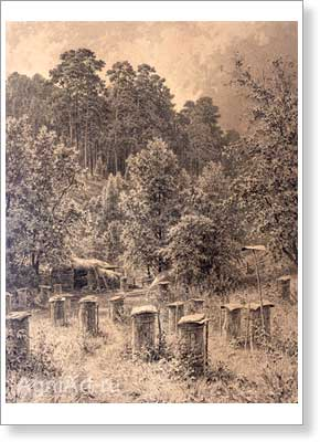 Shishkin Ivan. Apiary. Art print on canvas