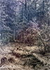 Shishkin Ivan. Forest Swamp. Art print on canvas