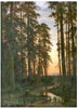 Shishkin Ivan. Evening in a Pine Forest. Art print on canvas