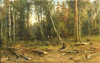 Shishkin Ivan. Birch wood. Art print on canvas