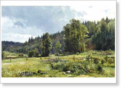 Shishkin Ivan. Meadow at the Edge of the Wood: Siverskaya. Art print on canvas