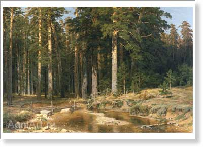 Shishkin Ivan. Mast-Tree Grove. Art print on canvas
