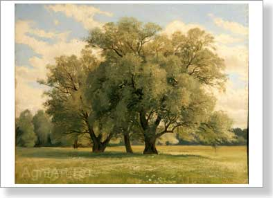 Shishkin Ivan. Oaks. Art print on canvas