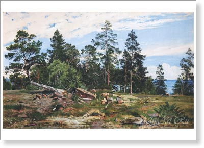 Shishkin Ivan. Forest on the Seashore. Fine art print A3