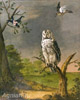 Owl Sitting on a Branch. Art print on canvas