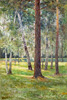 Volkov Yefim. Forest on a sunny day. Art print on canvas - paintings, sale