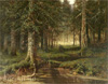 Klever Yuly. Forest. Art print on canvas